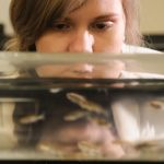 'Research Dream Team' studying zebrafish, exercise